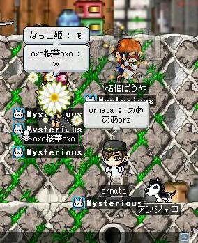 Maple0009[1].jpg